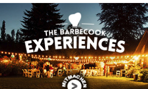 Google AdWords Display Kampagne barbecook ® grills